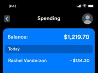 Spending details expanded