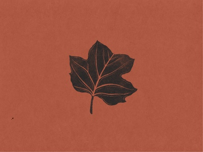 Tulip Poplar Leaf Icon leaf hand drawn icon logo illustrator illustration art branding illustration louisville graphic graphic design designer design