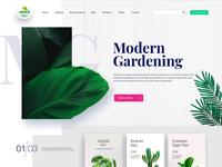 Online Gardening Web Template theme design prototype ux ui business webdesign gardening gardens