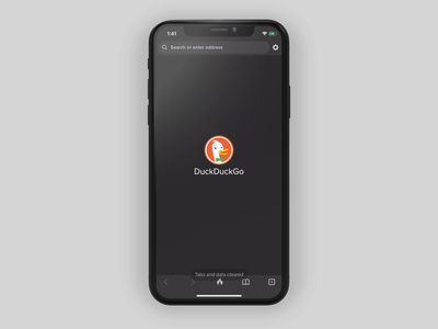 DuckDuckGo Privacy Essentials mobile design ios mobile app privacy