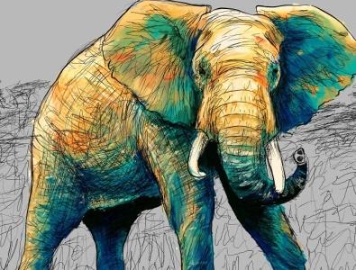 Elephant pintura digital illustration