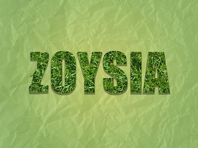 Zoysia logo green photoshop