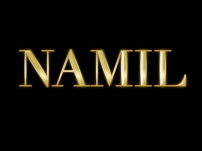 NAMIL golden photoshop logo design illustration