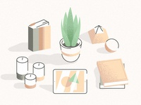Plant, Books & Stuff