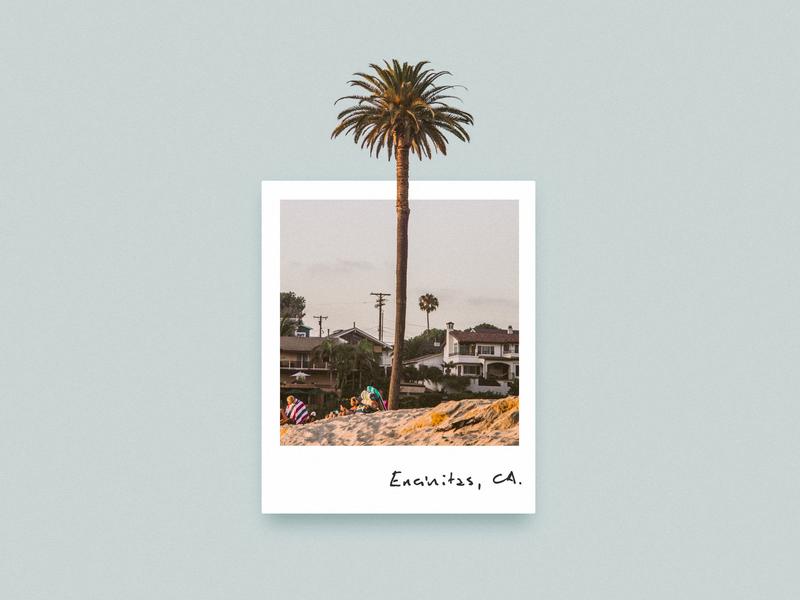 Encinitas, CA. travel trip holiday instant film polaroid sunset tree photography photo palm beach summer palm california