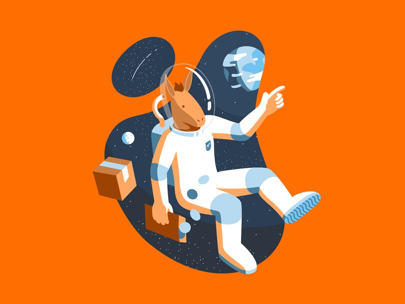 AstroMule character illustration flat shadow light moon planet space lost delivery box shipping sticker animal mule