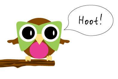 Hoot logo concept draft pink green brown owl hoot
