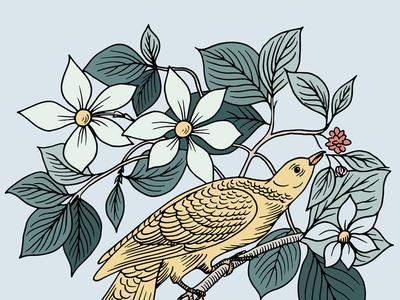 Botanical Bird Illustration
