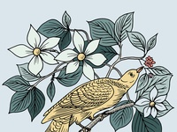 Botanical Bird Illustration