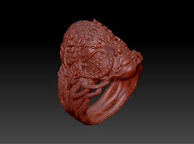 Face ring 1 zbrush pixlogic zbrush rhinoceros illustration design
