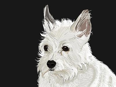 Penelope design illustration