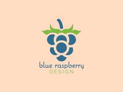 Blue Raspberry Design logo designer logo design logodesign logos logomark logo design graphic design branding design branding concept branding and identity branding brand identity brand designer brand design brand