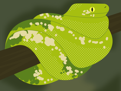 Snake vector snake dots green