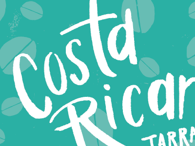 Coffee Packaging packaging brush pen hand lettered white teal coffee beans costa rican