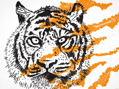Go Get Em Tiger texture orange black ink stripes brush pen illustration tiger