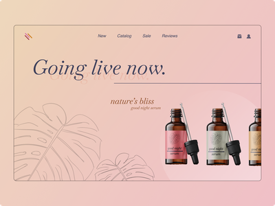 Product store illustration branding oils italic colors simple pastel webdesign product