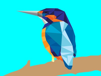 kingfisher illustration