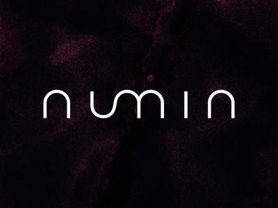 Numin Logo Design corporate strategy numin letterforms lettering identity monogram mark wordmark branding logo