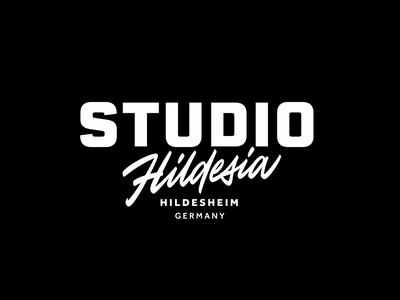 Studio Hildesia script lettering brush identity typography script hand-writing леттеринг calligraphy logotype logo lettering