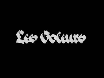 Les Voleurs logo lettering calligraphy pilot parallelpen каллиграфия леттеринг лого логотип lesvoleurs