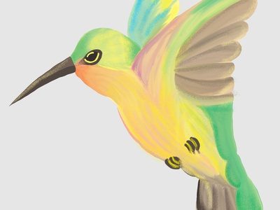 Hummingbird digital painting illustration