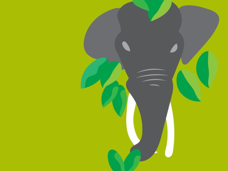 Elephant wild elephant digitalart illustration
