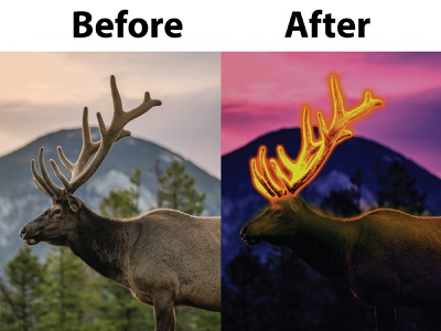 Color Balance Using Photoshop illustrator photo editing photo edit photo editor photoshop