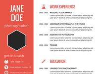 Flat Resume Template cv template resume