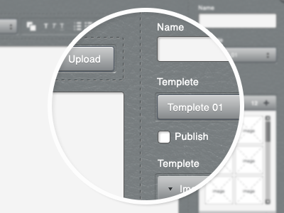 Leather UI Design leather stitches clean form ui ux grey blue buttons fields input boxes
