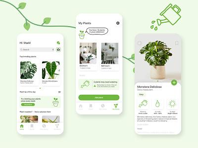 Plant care app 🌱 adobe icon illustration ux wireframes cards plant care ux design ui design branding graphic design ui