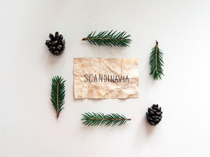 Scandinavia lettering handlettering type typography minimal vintage pine scandinavia