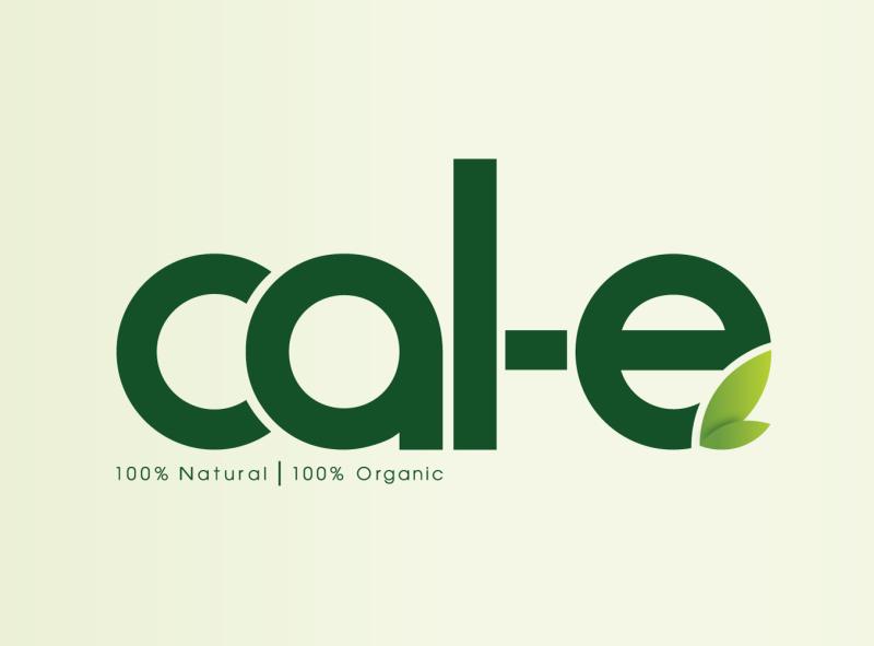 Organic Food Logo Design logo design food logo illustration natural logo organic logo logo