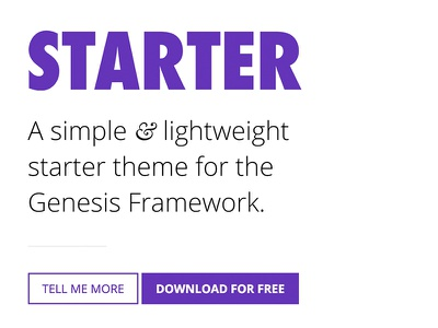 Starter Theme - Teaser freebie blog theme wordpress ux ui typography web design genesis framework