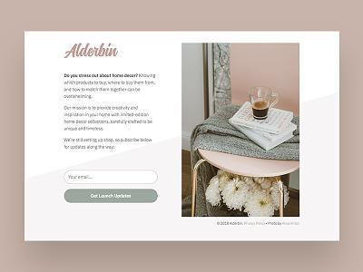 Alderbin signup page. website landing page splash page ux ui design