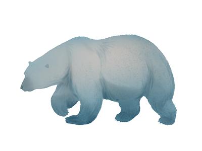 bear 1 autumn animal illustration