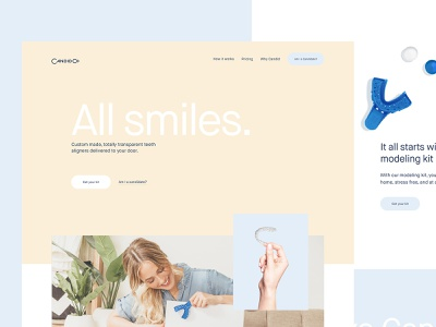 Candid Co Concept toyfight website web design ux design ui
