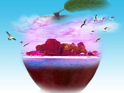 Island On The Apple thumbnail beginer adobe photoshop manipulation branding illustration banner ajichendra design
