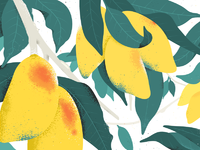 Mango mishax