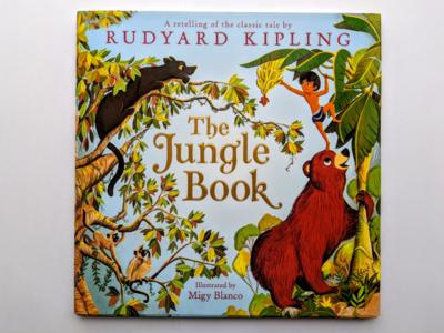 The Jungle book picture book jungle book illustration
