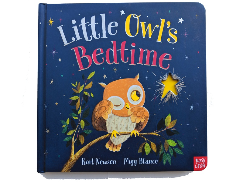 Little Owl's Bedtime lettering background art hand lettering kids book childrens book migy picture book illustration