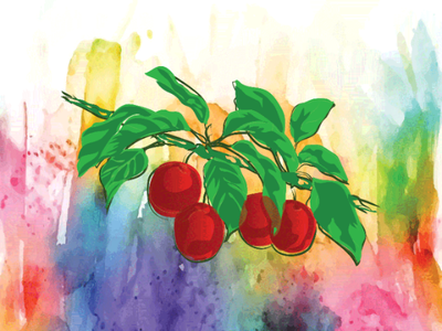 Illustration Extraordinary fruit and leaf binding drawing design dribbble watercolor art graphic design fruits leaf illustration art vector illustrator