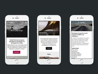 Home, case study pages. Web agency website mobile version