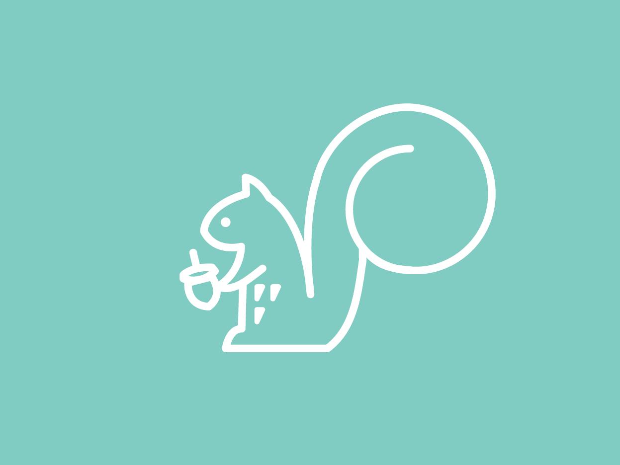 Squirrel creative design animal illustration squirrel lineart