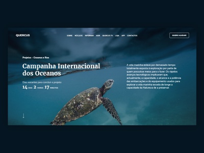 Quercus Redesign - Project webpage ux ui redesign donation environmental web