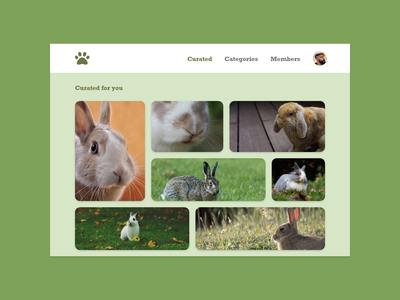 Daily UI #091 - Curated for You cute rabbits rabbit bunny bunnies for you curated for you curated curate adobe adobe xd adobexd ux ui design dailyuichallenge daily ui dailyui daily 100 challenge daily