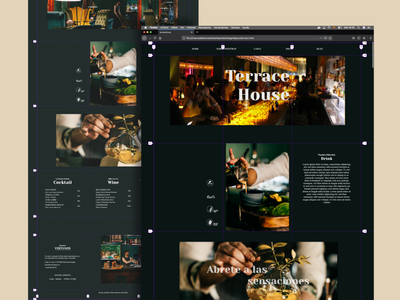 TerraceHouse minimal glamour bar web ux front-end