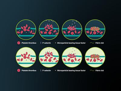 iPact e-learning module (3) flat illustrator graphic design