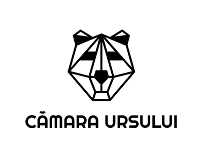 Logo design for Camara Ursului animals animal logo animal logo design logodesign logos logotype logo linework lineart digital illustration illustrator vector flat