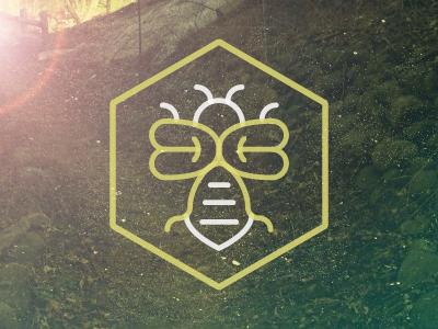 Dribbble bee2