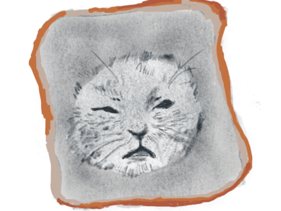 Catwich art aesthetics commission illustration cats cat